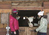 Visite et dégustation à la ferme du Crêt