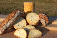 53ème journées de la Fourme de Montbrison et des Côtes du Forez