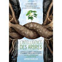 """Séance de cinéma : documentaire """"L'intelligence des arbres"""""""