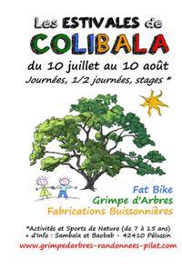 """Les Estivales de Colibala """"Fabrications buissonnières"""""""