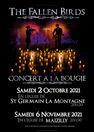 Concert à la bougie - The fallen birds
