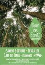 Bain de forêt aux Tines avec Tiphaine Breillot