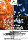 Magies d'automne, parcours 5 sens au coeur de la forêt