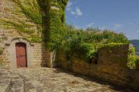 Visite du Château de Chamousset