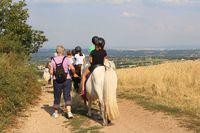 "Promenade à poney ""terroir"""