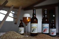 Visite chez un producteur - brasseur : les bières du Busard