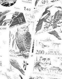 Bourse numismatique et cartophile