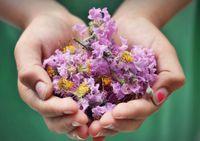 Découvrir l'aromathérapie - Atelier enfant