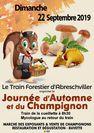 JOURNEE DE L'AUTOMNE ET DU CHAMPIGNON