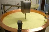 Découverte de la fabrication du fromage