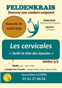 """Atelier Feldenkrais sur le thème """"Les cervicales : sortir la tête des épaules !"""""""