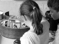 Ateliers créatifs : pré-cinéma et jeux d'optique