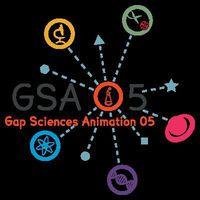 Conférence Gap Science Animations 05