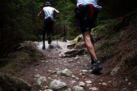 Sorties trail avec Denis Raynaud