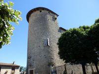 Visites guidées : le château des Tours