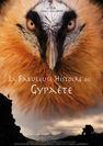 Cinéma de montagne - la fabuleuse histoire du gypaète