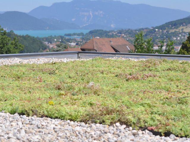 Toit végétal à Grenoble (38000), en Isère (38) et sur toute la région Rhône-Alpes