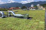 Toiture végétale en Savoie, Des Racines et des Murs