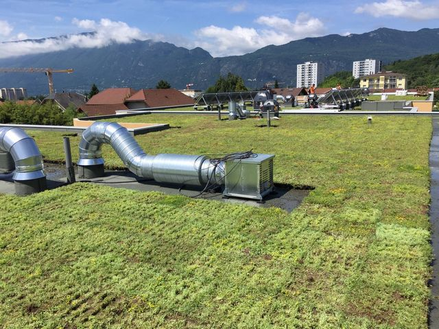 Toiture végétalisée à Chambéry, en Savoie (73) et sur toute la région Rhône-Alpes
