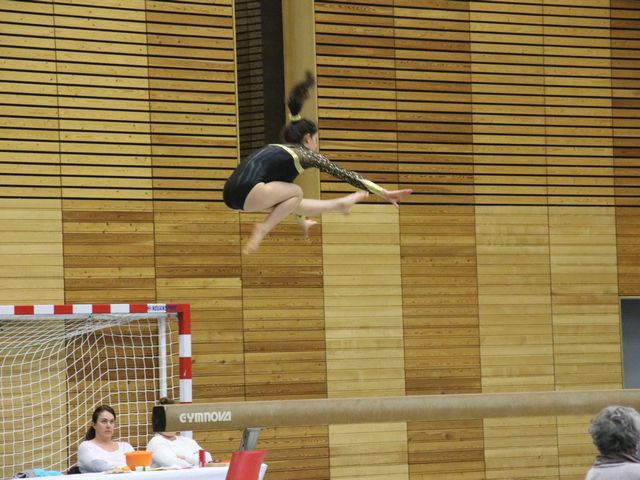 Fédération sportive gymnastique Isère
