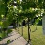 Jardins du Couvent des Carmes