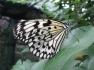 Jardin des découvertes - La Ferme aux Papillons