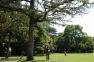 Jardin de Marliave