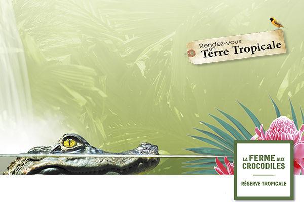 Les rendez-vous en Terre Tropicale de la Ferme aux Crocodiles