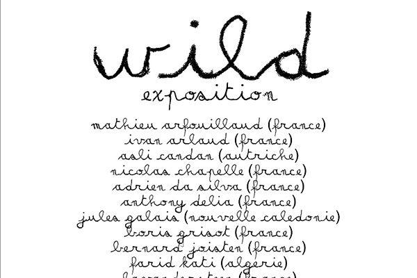 "Expo ""Wild"" à la Bastille de Grenoble"