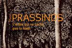 "Expo ""Mario Prassinos, l'Arbre qui ne cache pas la Forêt"""