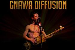Gnawa Diffusion, musique du monde à La Source de Fontaine
