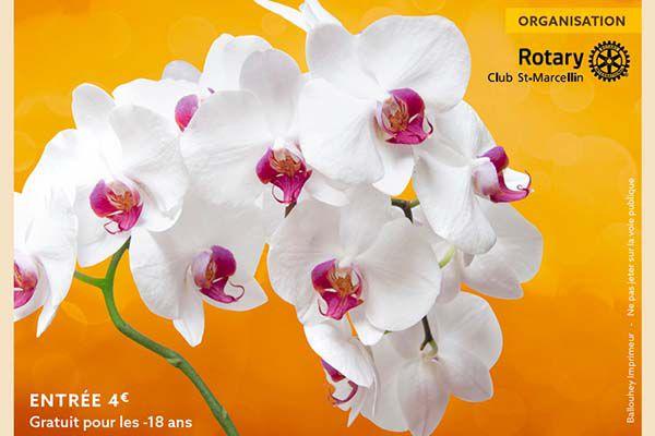 Salon des orchidées et plantes rares à St Marcellin