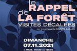 """""""Le rappel de la forêt"""" au musée de St-Antoine-l'Abbaye"""